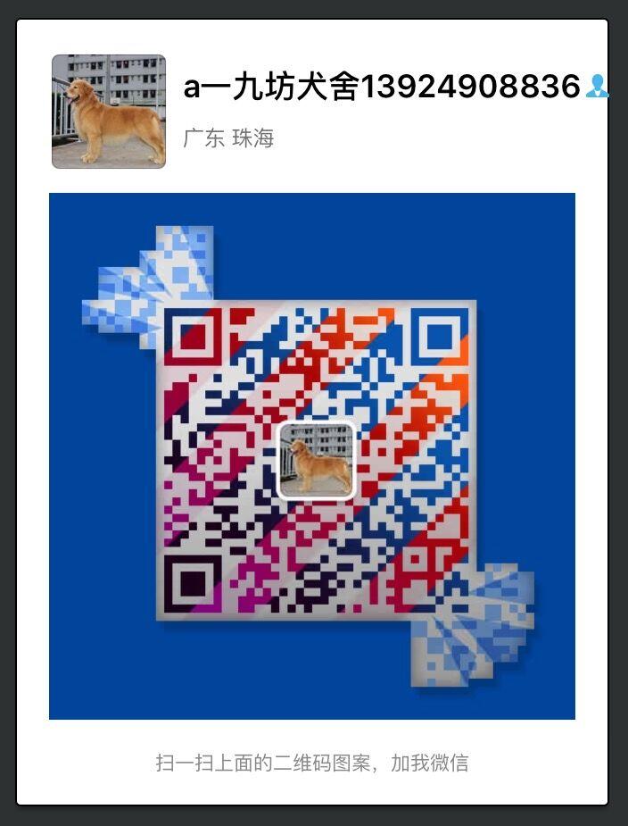 微信315883019,电话13924908836